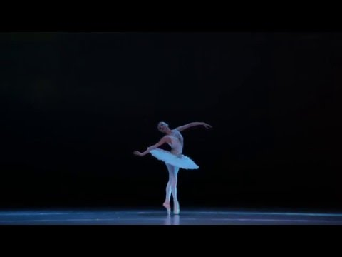 """Сен Санс, """"Умирающий лебедь"""", хореография М Фокина"""