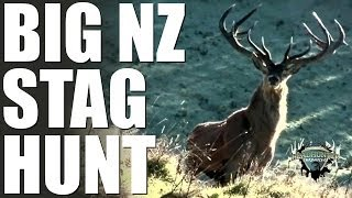 Headhunter Chronicles - Bow hunting big reds and sambar in New Zealand