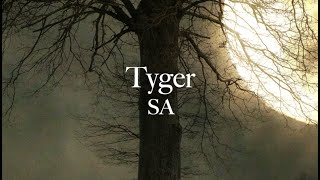 """Tyger"" by Elaine Hagenberg"