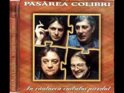 Pasarea Colibri -  In cautarea cuibului pierdut (1995) (full album)