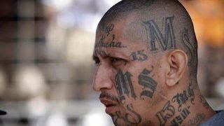 \'Hunting MS-13\': What we learned