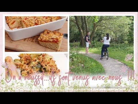 vlog-famille-du-4-août-:-crumble-de-courgette-sans-matière-grasse-et-placek-aux-abricots
