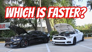 Whipple Supercharged Shelby GT350R vs Whipple Mustang GT