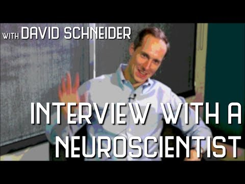 David Schneider - Interview With a Neuroscientist