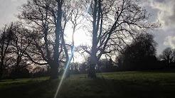 Spring has arrived to UK- official News - High Wyvombe - Hughenden Park 16/04/2018- National Trust