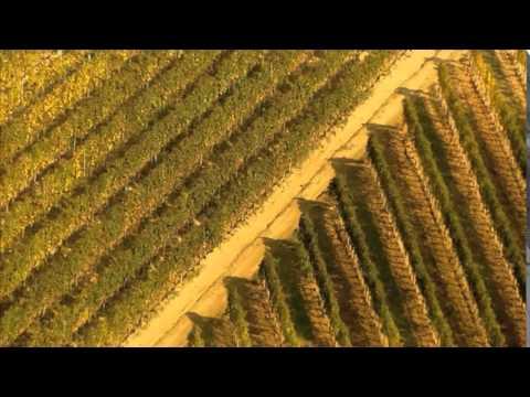 BEAUTIFUL WINE REGIONS IN HUNGARY