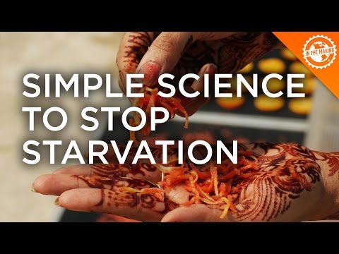 Simple Science to Stop Starvation and Boost Turmeric's Value