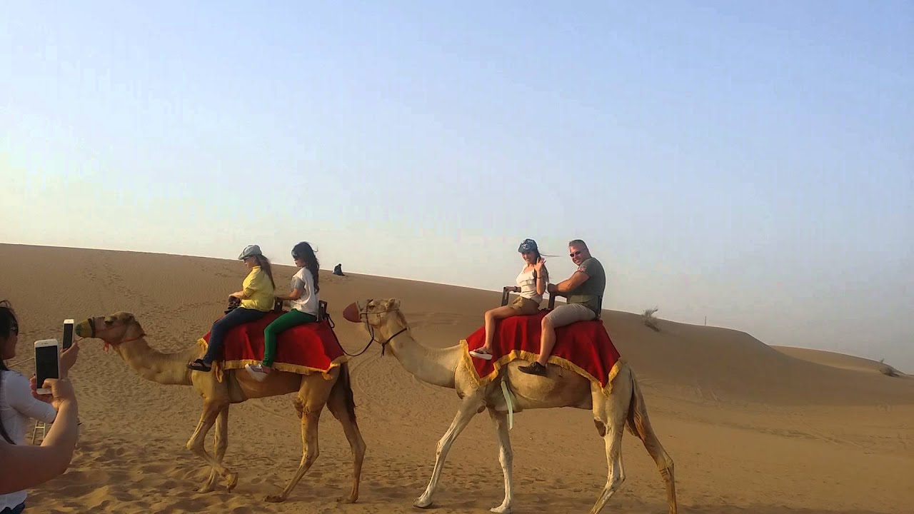 Dubai safari camel ride youtube dubai safari camel ride altavistaventures Choice Image