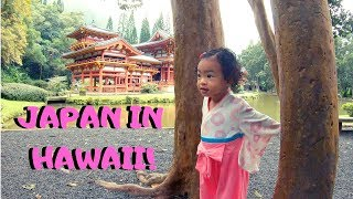 Byodo-in Temple (Valley of Temples) - Things to do on Oahu