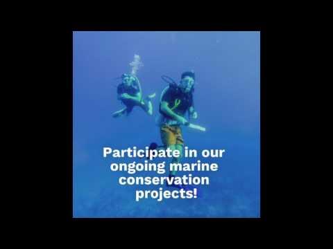 CISaustralia - Marine Conservation in Belize