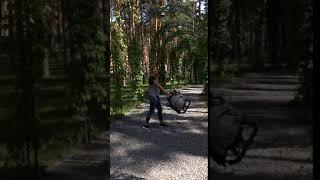 Самая лёгкая коляска Yoya 175А+