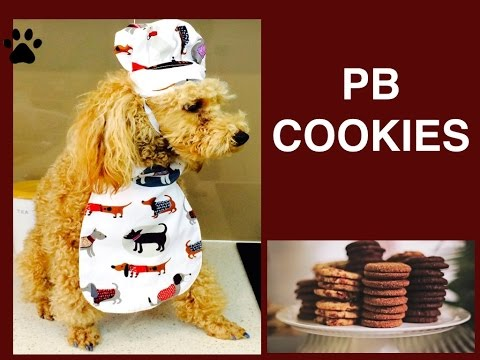 How To Make PEANUT BUTTER COOKIES - EASY DOG TREATS REMIX DIY Dog Food By Cooking For Dogs