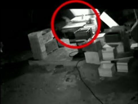 CCTV footage of burglars stealing clothes and dry fish