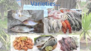 Koh Jum Baan Krang Seafood, Koh Jum Krabi Thailand