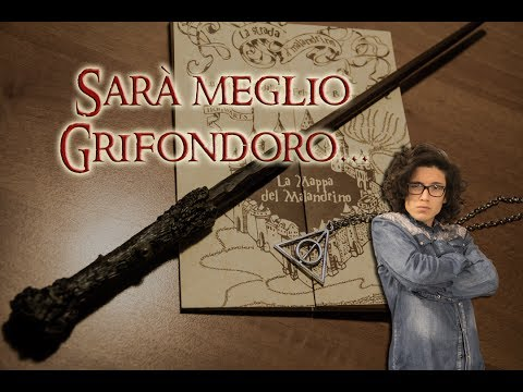 VLOG: Sarà meglio GRIFONDORO! - Planet Comics Villafranca 2013 (Rewiew acquisti)