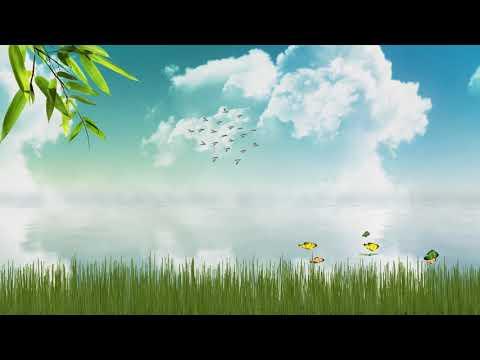 Video Animasi Background Alam No Copyright Youtube