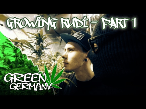 """The Garden"" | Growing Rudi - Part 1 |  GreenGermany #1"