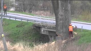 Obalenie topoli koło mostu w Opace-[15 kwietnia 2014r.]