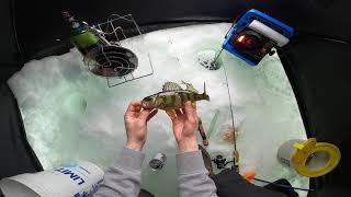 Ice Fishing Cazenovia Lake for Slob Perch and Bass