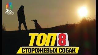 Топ 8 сторожевых собак| Top 8 Guard Dogs