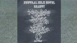 Neutral Milk Hotel - Beauty (Remastered) [FULL ALBUM]