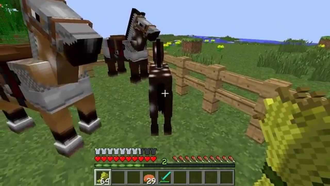 Tuto Comment accoupler/reproduire des chevaux dans
