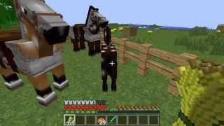 Tuto Comment accoupler/reproduire des chevaux dans minecraft 1.7.2 -HD