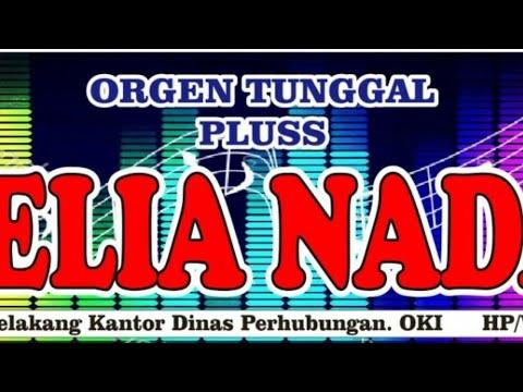 The Best House Musik DJ Nonstop Terbaru Paling Populer AMELIA NADA ORGEN TUNGGAL PLUS ASYIK.....