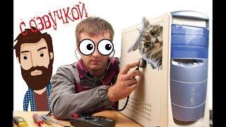 Приколы с котами с ОЗВУЧКОЙ – бабушка Грении и жвачка – САМОЕ СМЕШНОЕ ВИДЕО – domi show