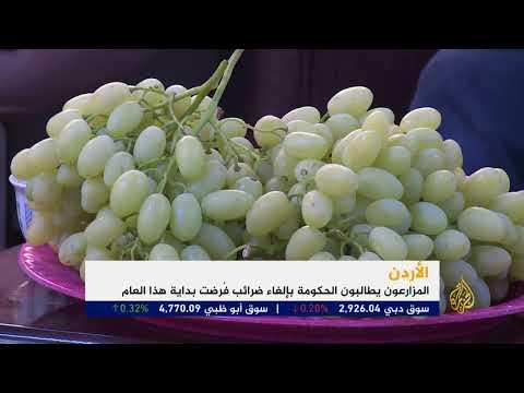 المزارعون الأردنيون يهددون بالاحتجاج لمواجهة الضرائب  - نشر قبل 1 ساعة