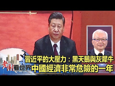 習近平的大壓力:黑天鵝與灰犀牛 中國經濟非常危險的一年-謝金河 劉泰英《老謝看世界》2019.02.02