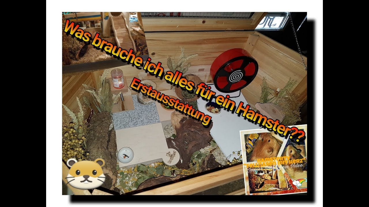 was braucht man alles f r eine hamster einrichtung youtube. Black Bedroom Furniture Sets. Home Design Ideas