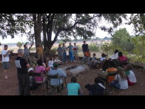 Celebrating a Conservation Partnership with Chipembele Wildlife Education Trust