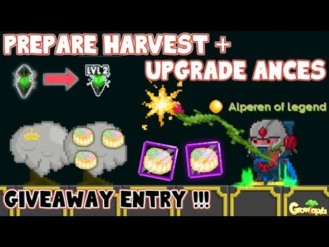 Prepare Harvest + Upgrade Ances and Giveaway   GrowTopia