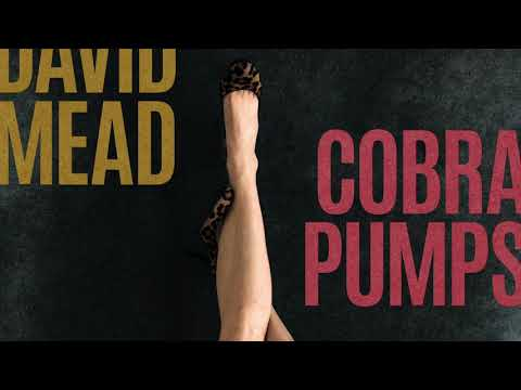 DAVID MEAD- POSTER CHILD (AUDIO from COBRA PUMPS) Mp3