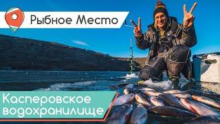 Окунь густера и подлещик со льда Зимняя рыбалка на Касперовском водохранилище Рыбное место