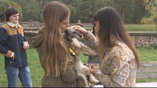 Помощь животным Солигорска