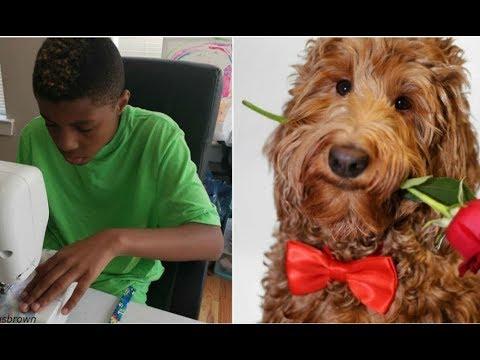12-летний малыш делает галстуки для собак, чтобы помочь им обрести дом