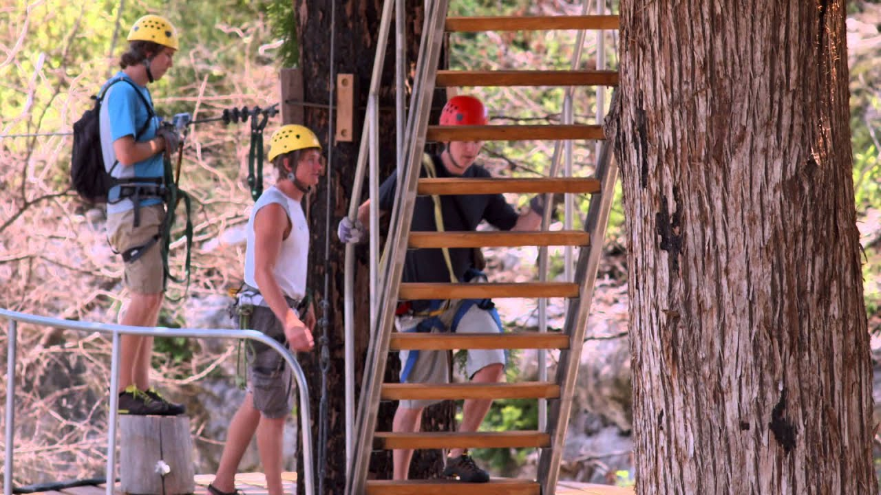 Zipline u0026 Treehouse Resort Cypress Valley Canopy Tours Austinu0027s Ultimate Ziplining Near Lake Travis : canopy zipline austin - memphite.com