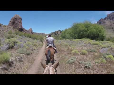 Galloping Through Patagonia