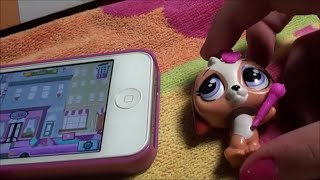 Lps Philadelphia Phurry Face, The Beagle Scanning Into Lps Your World App Free