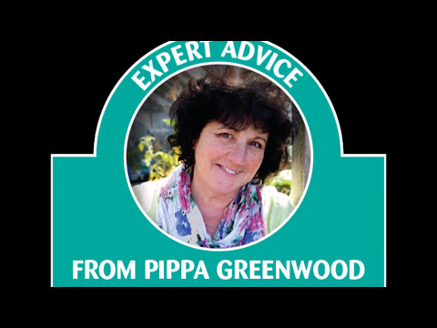 Pippa Greenwood Haxnicks Rootrainers - better roots give better crops