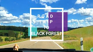 Road Trip To Black Forest