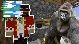 Wrestling A Gorilla