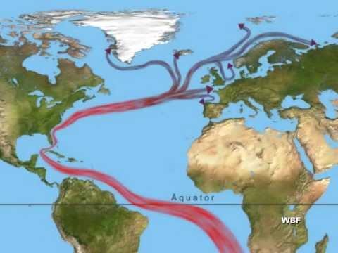 Wbf Der Golfstrom Eine Meeresstromung Und Ihr Einfluss Auf Das