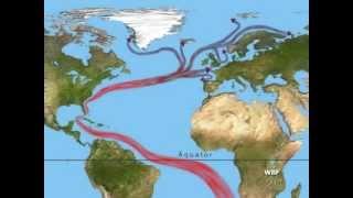 WBF - Der Golfstrom - Eine Meeresströmung und ihr Einfluss auf das Klima (Trailer)