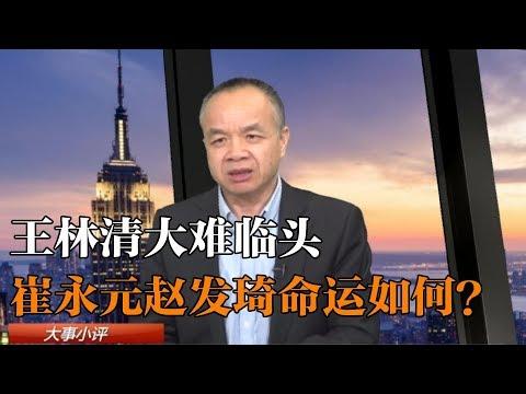 陈小平:王林清大难临头,崔永元赵发琦命运如何?