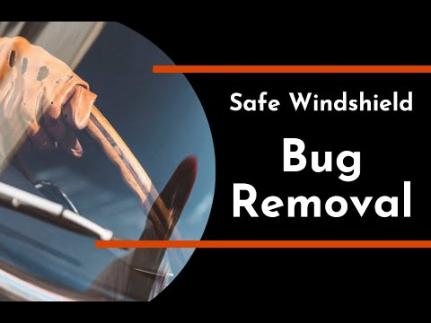 Safe Windshield Bug Removal