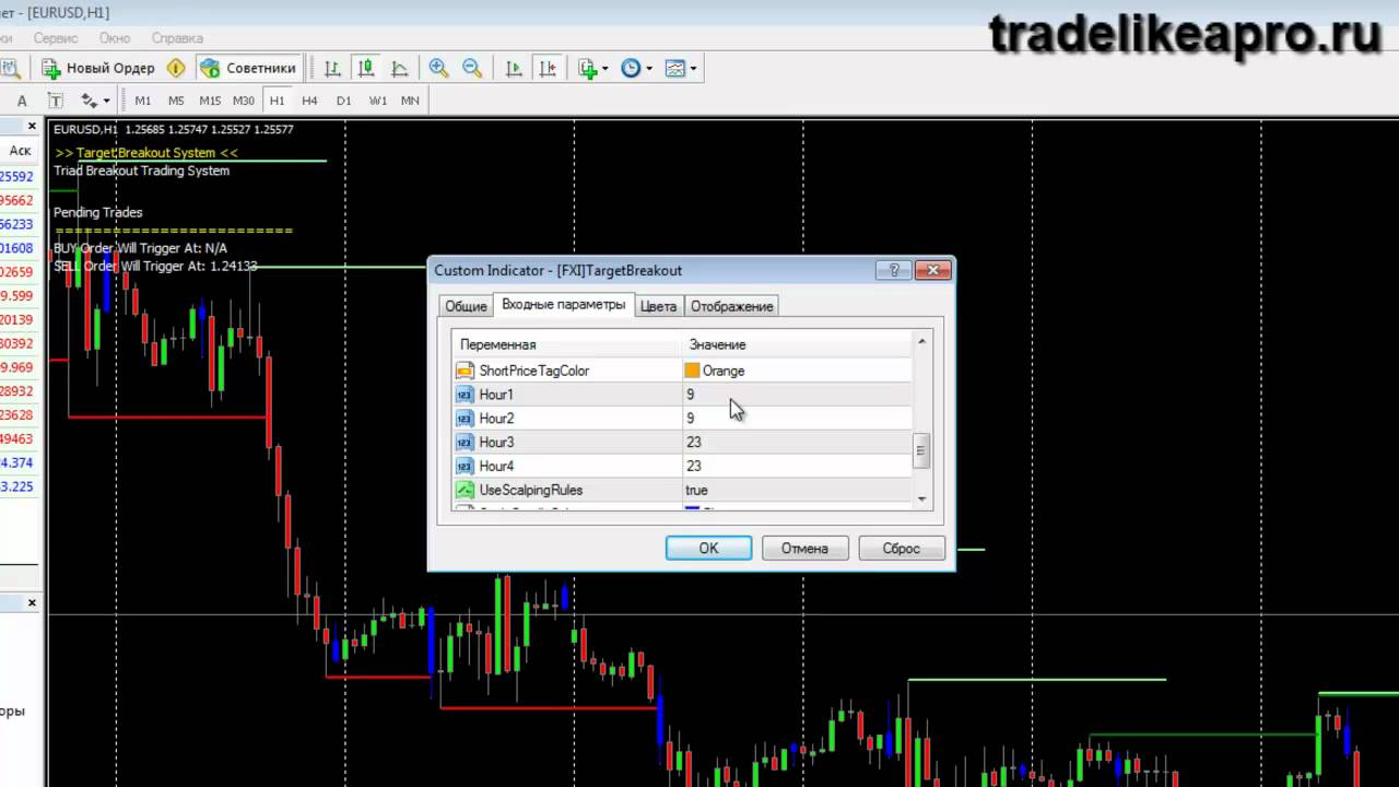 Online platform Binary Options 2015 Collegno
