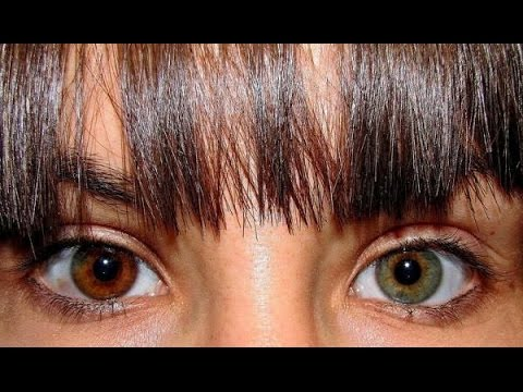 Image result for глаза разного цвета